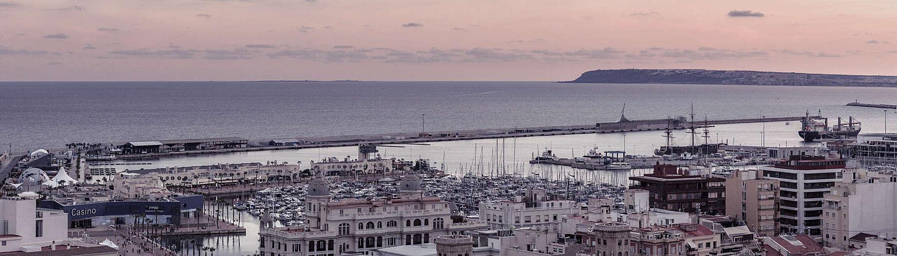 Cover image for Alicante